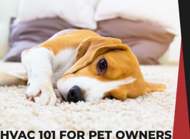 Pet Owners HVAC Maintenance Tips